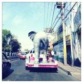 Traffic elephant