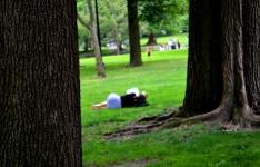 Sleeping at Boston Common