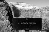 Zion National Park by @desautomatas