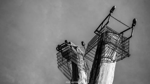 The Heidelberg Project. Detroit 12/3/17 By Juan Cardenas @desautomatas